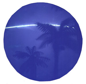 solarprint-round-tin-palms.jpg